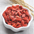 Goji Berries Side Effects