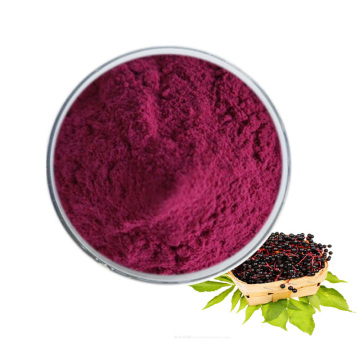 High quality pure black elderberry extract powder