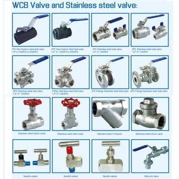 Stainless Steel Pipe Valves