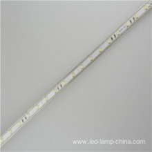 AC110V LED Tape light 100m Per Roll 5050 Led Strip 220v