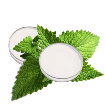 Stevia rebaudioside sweet leaf extract stevia powder