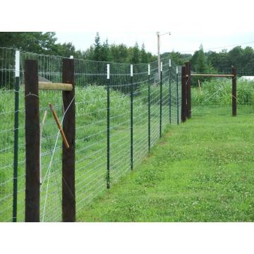 factory supply deer fence for sale