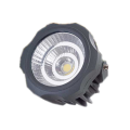 20W Outdoor Flood Light Bulbs
