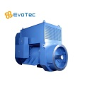 Special IP55 Generators for Oil Field