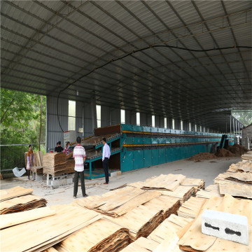 Widely Used Of Veneer Dryer