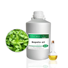 Pure Natural Wormseed Oil From Herbs Extract Oil