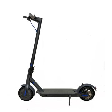 Kick 350W Motor 10 ah Battery Electric Scooter