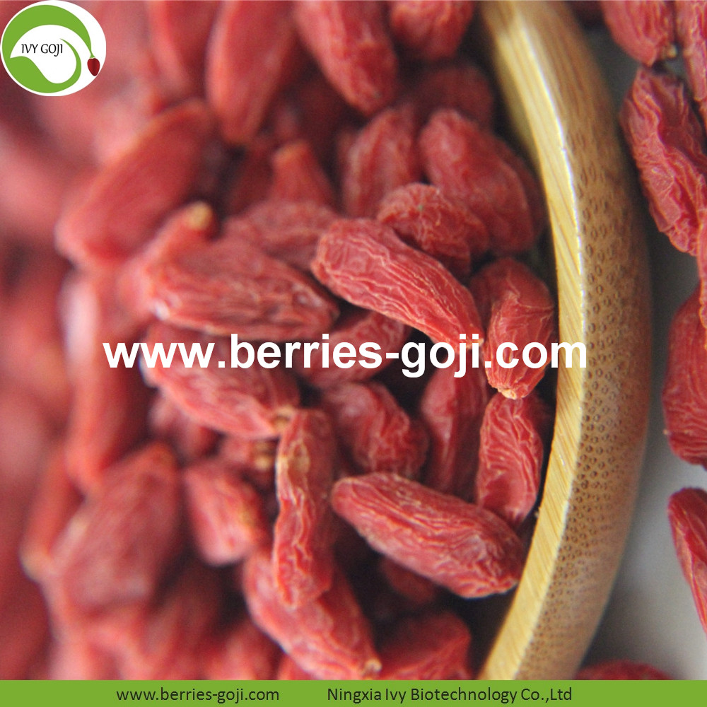 Common Goji Berries