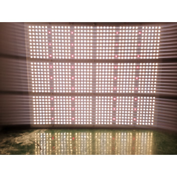 Best Quality Full Spectrum 1000W Grow Light