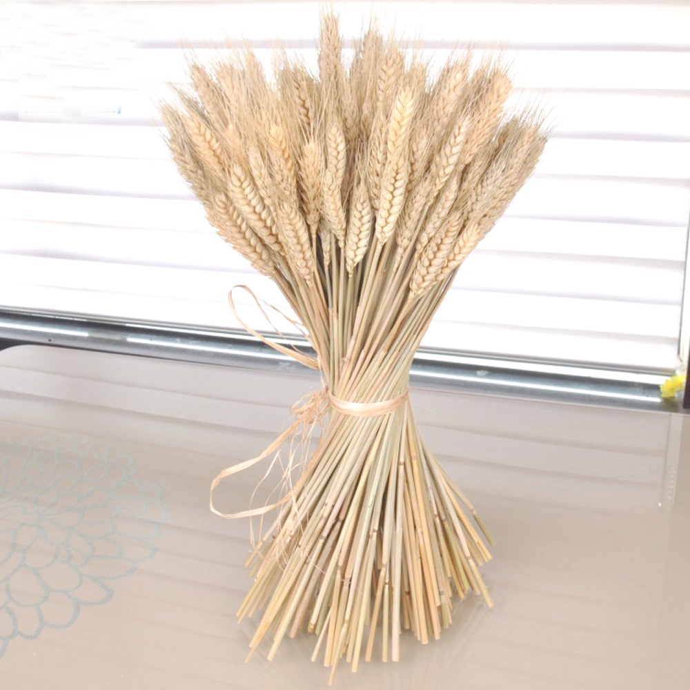 100pcs natural dried flower bouquets natural raw color dried ear of wheat bouquets&wheat ear Bunches