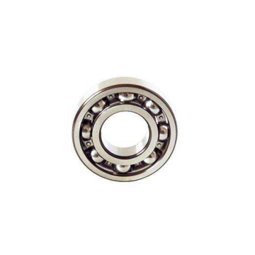 Single Row Deep Groove Ball Bearing (6021)