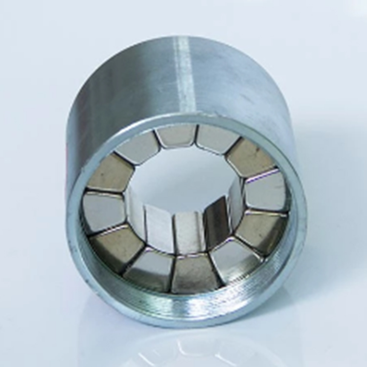 Magnetic Coupling 053