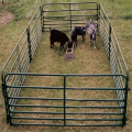 high galvanized cattle horse fencing metal fence