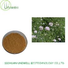 Astragalus Extract Polysacchrides 70% Astragaloside 5%-98%