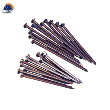 0.5 inch high quality black common nail