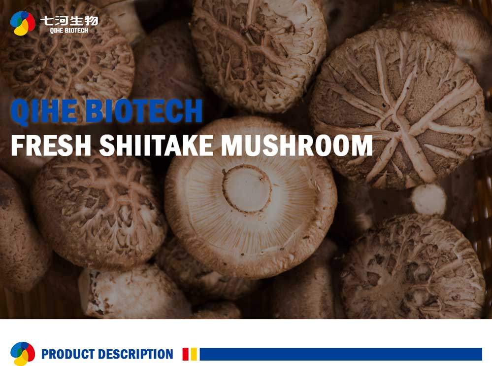 Sweet Fresh Shiitake Mushrooms