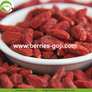 Pure Authentic Natural Fruit Vitamins Common Goji Berry