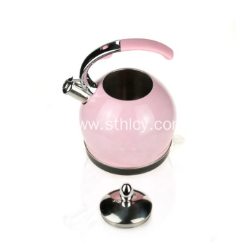 Portable Kettle Stainless Steel Electric Kettle
