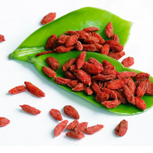 2017 Fresh Feral Organic Goji Berries