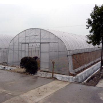 single-span Greenhouse for vegetables