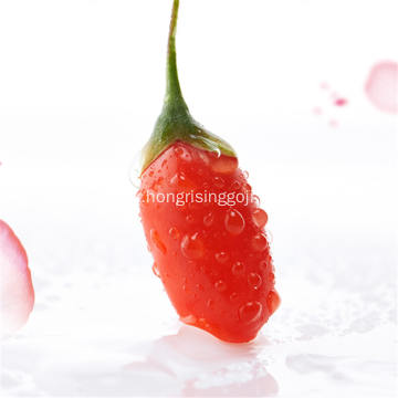 Good Taste of Goji Berry