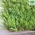 China Landscaping Grass for Garden