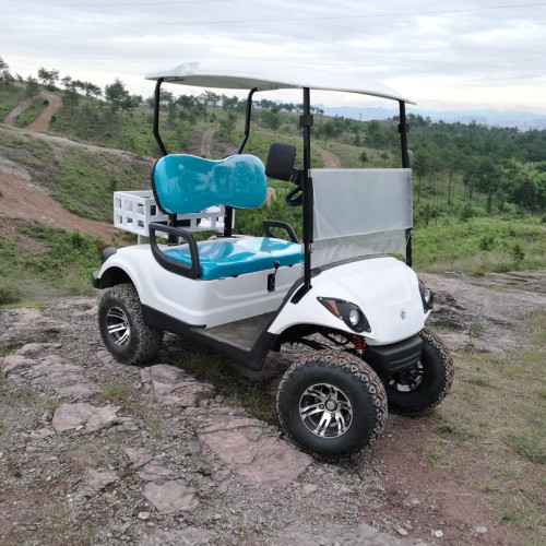 300cc 2 seats gas golf cart for sale