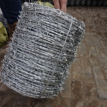 Hot-Dipped Galvanized Barbed wire fence with Customizable