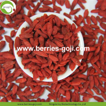 Factory Supply Nutrition Dried Organic Goji Berries
