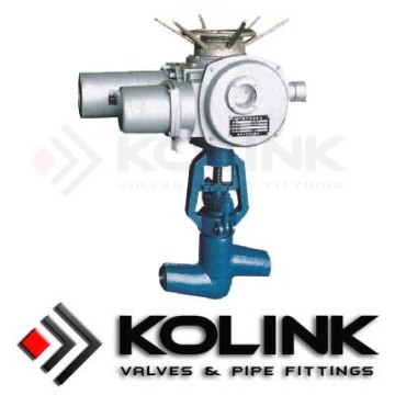 Electric Actuated Globe Valve