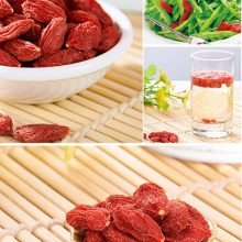Factory Hot Sale Dried Ningxia Goji Berry