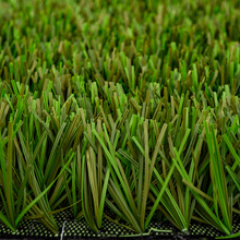 Natural Landscape Grass for Garden