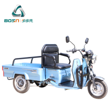 small cargo electric leisure tricycle for the elderly
