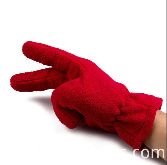 Fleece Gloves 3