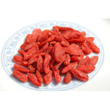 Natural Certificated hot dried Goji Berry