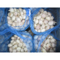 Loose Bag Normal ail blanc de 10kg