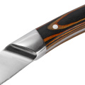 Garwin steak knives with double bolsters