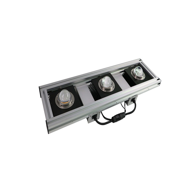 LED Grow light for vegetable