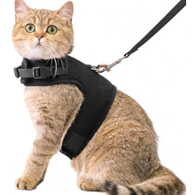 Pet Cat harness adjustable with leash