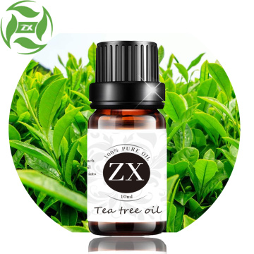 100% pure natural tea tree oil for acne