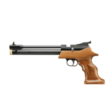 PCP Air Pistol PP800