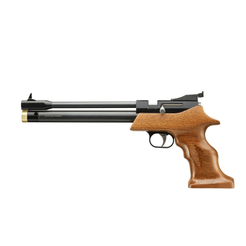 PCP Air Pistol PP800R