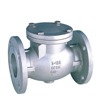 ANSI Stainless Steel Check Valve