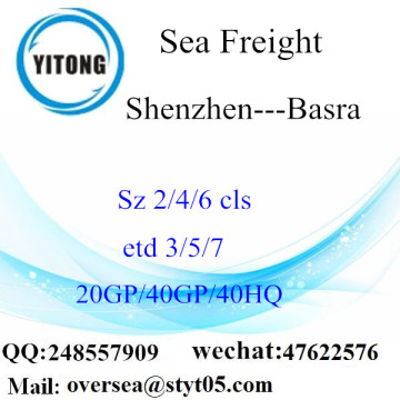 Shenzhen Port Sea Freight Shipping To Basra