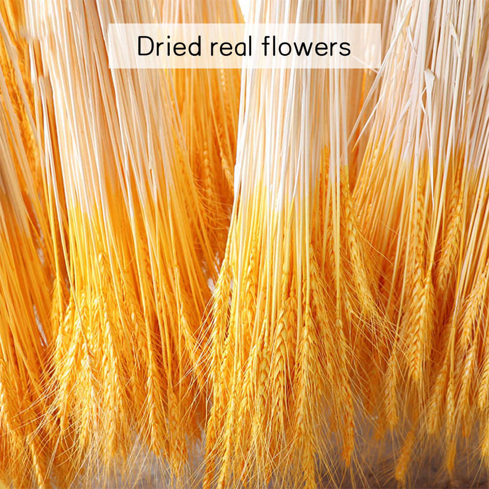 Pampas Decor Grass Real Wheat Ear Flower Plants Decoration Bouquet Fluffy Lovely For Home Decor Wheat Bouquet Photo Props