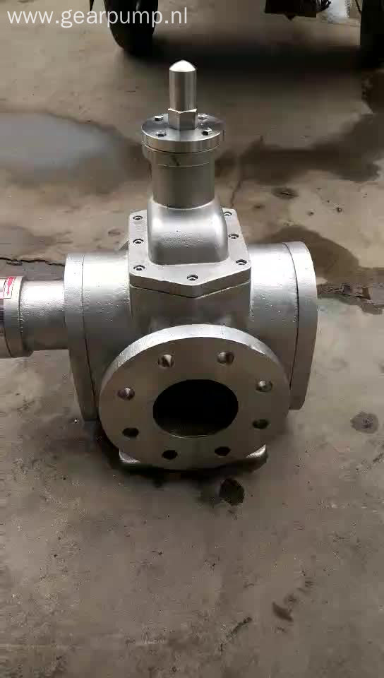 High efficiency large flow YCB stainless steel lubricating oil arc gear pump