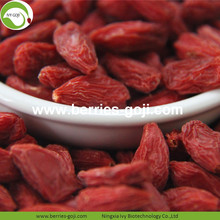 Bulk Package Natural Premium Dry Conventional Goji Berry