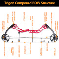 1Set 19-70lbs Archery RIGON Compound Bow Sets Right Hand USA Gordon Composites Limb Hunting Bow For Archery Shooting Accessories