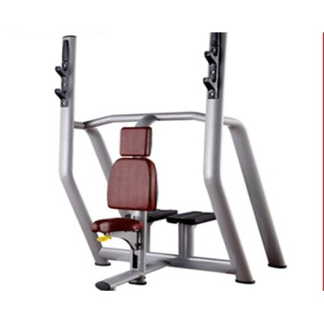 Professional Gym Strength Training Vertical Bench