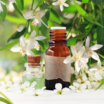 Neroli Essential oil for Aromatherapy